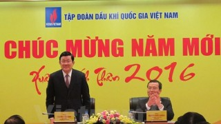 petrovietnam hopes for strong growth in future