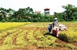 towards hi tech farming