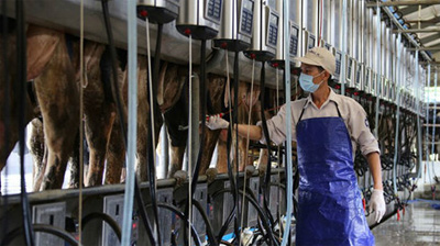 TPP to bolster agriculture export opportunities