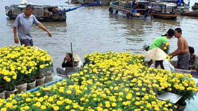Can Tho to promote Cai Rang floating market
