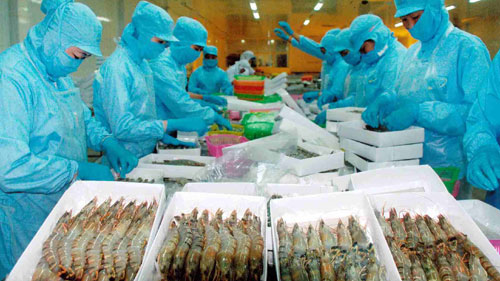 Quality seafood fuels surge in exports to China