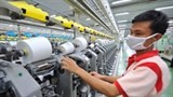 big year likely for vietnams textile garment exports