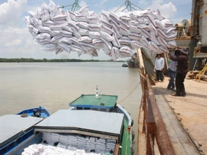 Insiders seek ways to iron out agricultural export difficulties