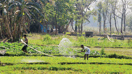 Indian Government Announces Steps to Double Farmers' Incomes