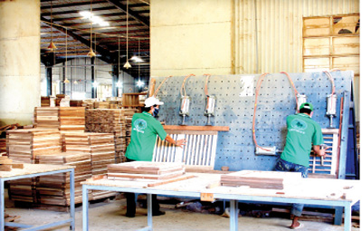 Confidence at 2016 wood export target
