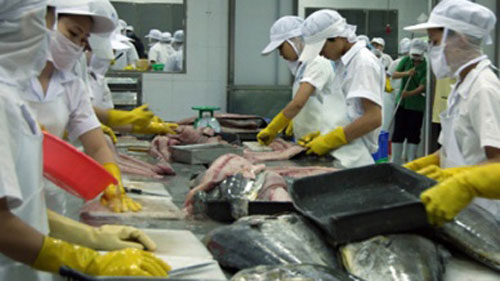 Vietnam's tuna exports poised for a comeback