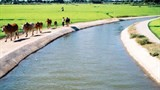 vietnam protects water resources for sustainable rural development