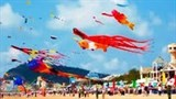 vung tau to host kite festival
