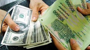 Forex rates need to be adjusted: experts
