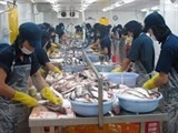 brussels forum talks vietnam catfish export to eu