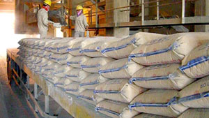 Cement sector looks for sustainable export