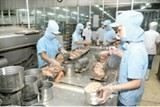 fish processing biotechnology applied