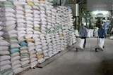 tightening rice production export over drought saltwater intrusion