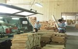 viet nam eu agree on timber export regulations