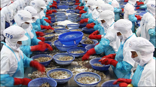 Agro-fishery sector seeks to overcome challenges