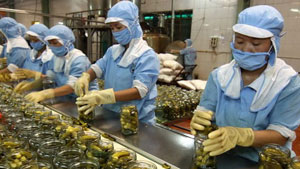 Vietnam records US$191 million trade surplus with Russia