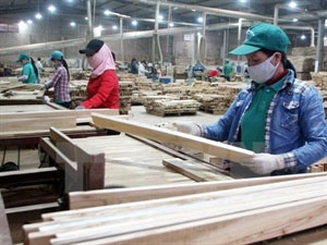 Vietnam's wood exports expected to surge