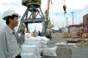 Seeking solutions  for sustainable export