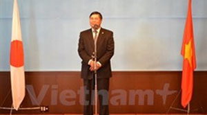 Tens of thousands to attend Vietnam cultural festival in Japan