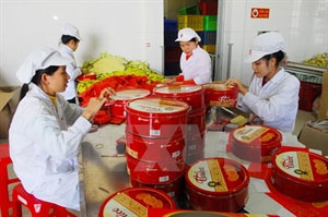 Vietnamese, Lao localities boost trade union links