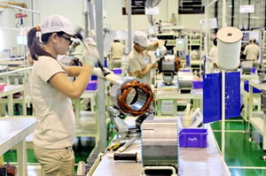 Dong Nai stable market leads export turnover rise