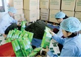 vietnamese russian economic cooperation fta to create breakthrough