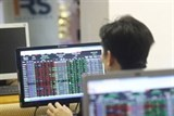 bourses rise as money keeps flowing