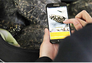 New technology helps prevent wildlife  smuggling