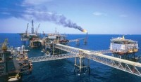 petrovietnam posts positive results in five months