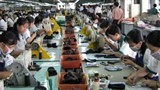 india vietnam eye leather business cooperation
