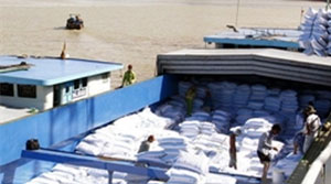 Over 2 million tonnes of rice shipped abroad