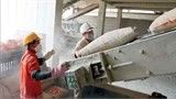cement industry gets back on track