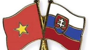 HCM City seeks multifaceted links with Slovakia