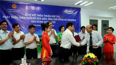 Vinamilk inks dairy deal with Lam Dong