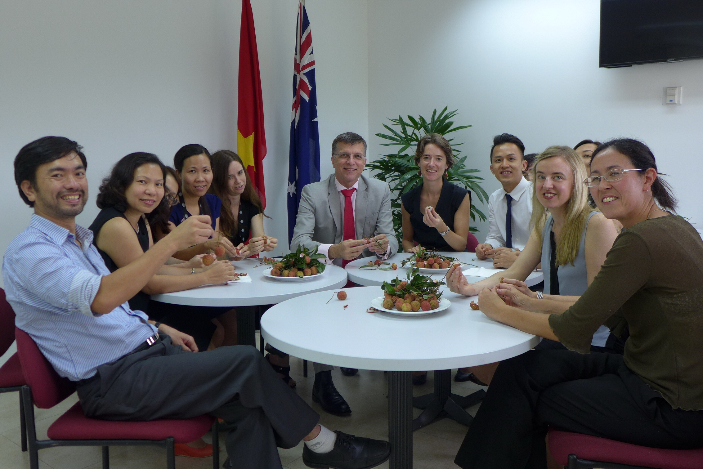 Vietnamese Lychees now selling in Australia