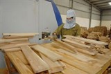 wood product export value set to meet annual target
