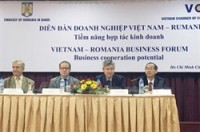 romania calls for more vietnamese investment