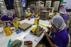 malaysia loses 6 billion usd from foreign worker freeze