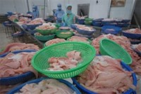 more vietnamese catfish exporters qualify for us market