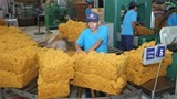 vietnam rubber exports rise marginally