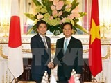 vietnamese japanese pms talks ways to promote ties