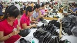 latin america vietnam to expand trade