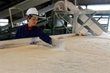 tender planned for sugar imports