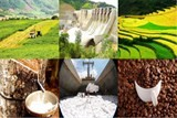 agricultural sector looks to boost fdi inflows