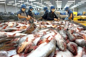 Britain imports more tra fish