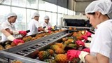 fruit and veggie exports taking root in new markets