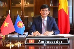 asean india boost links for mutual development