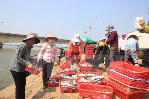 Numerous supports proposed for pollution-affected fishermen