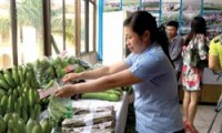 hanoi enhances agricultural sales networks