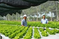 binh phuoc high tech farming centre opens